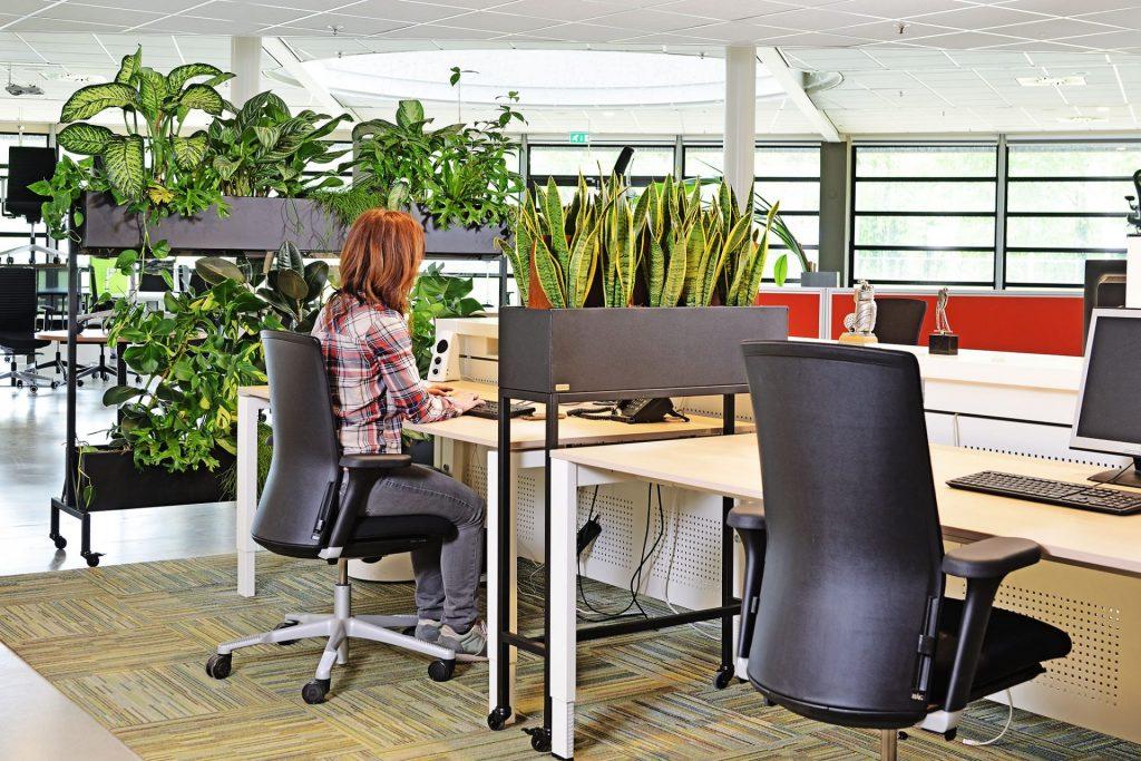 Veilig groen kantoor