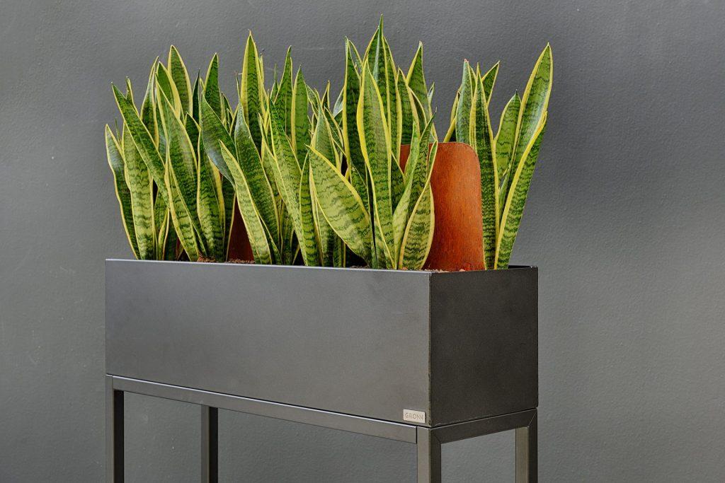 veilig groen kantoor Dijkos Projects